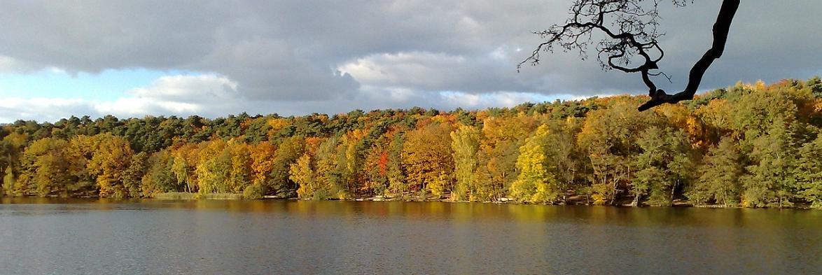 Foto vom Wannsee im Herbst