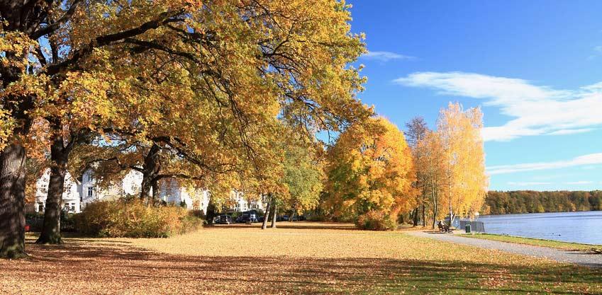 Park in Wendenschloss